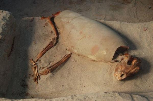 В Египте замечены необычные 2000-летние захоронения