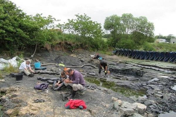 Отысканы останки существ, первыми на планете выползших на сушу