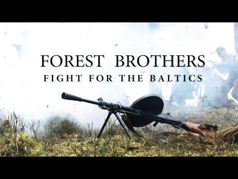 Балтийский фронт кремлевской пропаганды: история стратегического краха