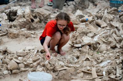 Археологи спрашивают защитить культурный слой