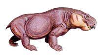 Ранние деды млекопитающих всё же бродили бок о бок с динозаврами