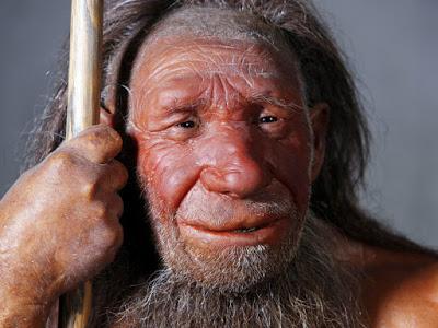 Антропологи выяснили, зачем неандертальцу был необходим огромный нос