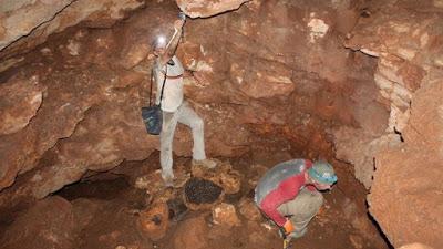 В пещере к норду от Модиина найдена редкая монета восстания Бар-Кохбы