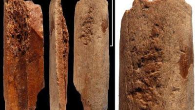 Археологи нашли самые старые в Китае костяные орудия