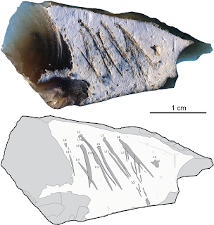 В Крыму отыскано каменное послание неандертальца