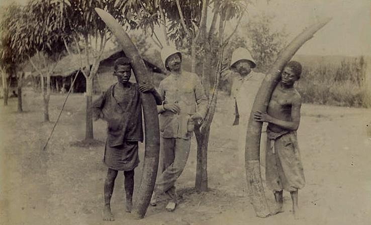 Бельгийское Конго: как зверствовали белоснежные люди в «Свободном государстве»