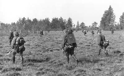 Как нацисты желали покончить с советскими партизанами перед Курской битвой