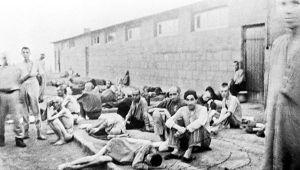 Как пленные союзники относились к советским бойцам, с которыми сидели в концлагерях