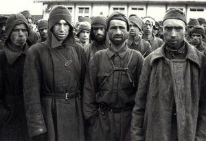 Операция «Предательство Родине»: как агенты СМЕРШа приучили немцев убивать сдающихся красноармейцев