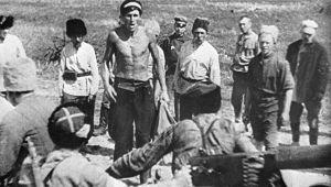 Отчего большевики начали набирать в Красную армию пленных белых
