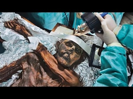 Вся правда о ледяном человеке / Iceman AutopsyNational Geographic  (2011)