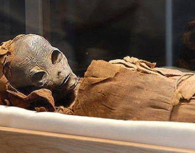 <p>В негласном отделе пирамиды фараона найдена мумия инопланетянина</p>