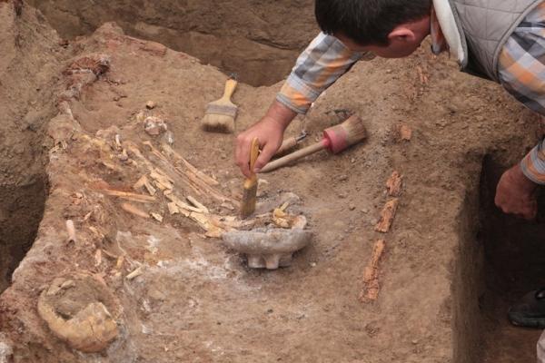 На Ставрополье нашли колесницу, которой больше трех тысяч лет
