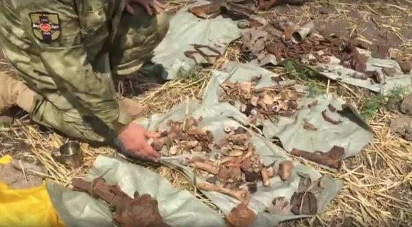 На Дону нашли останки экипажа бомбардировщика ВОВ