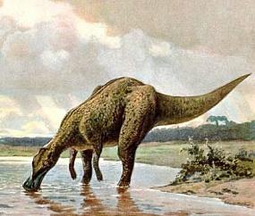 <p>Палеонтологи впервые заметили окаменелый мозг динозавра</p>