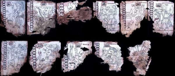 Доказана подлинность кодекса Гролье - древней рукописи майя
