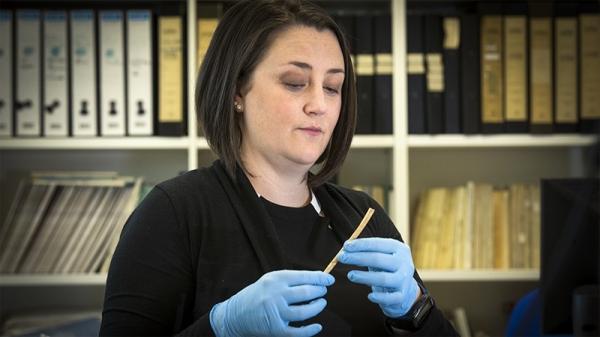 В Австралии отыскано древнейшее украшение аборигенов: носовая кость