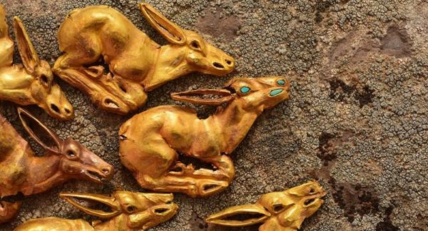 <p>Золото подсаков: археологи Казахстана обнаружили уникальное захоронение</p>