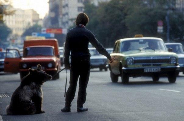 <p>СССР, 1980-е.</p>