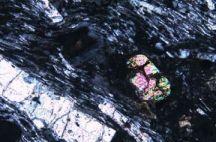 На дне Индийского океана отыщи затерянный микроконтинент