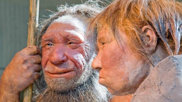 Закусил мамонта — почисти зубы