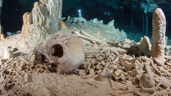 Янки из плейстоцена
