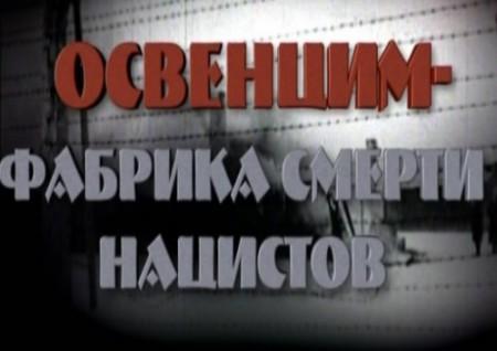 Освенцим  (2008)