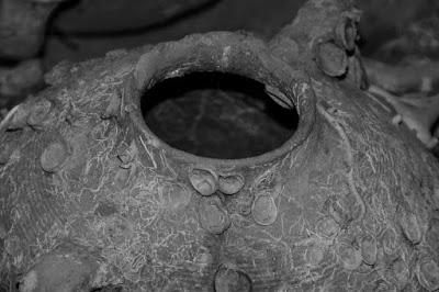 В Иерусалиме ученые отыщи амфору среднего бронзового века с обезглавленными лягушками
