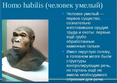 М. Добровольская. Демография древнего человека (2018)