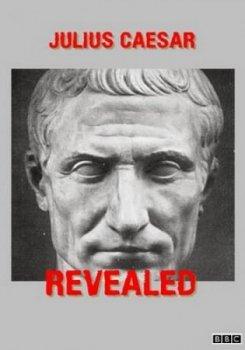 Юлий Цезарь без прикрас / Julius Caesar Revealed (2017)