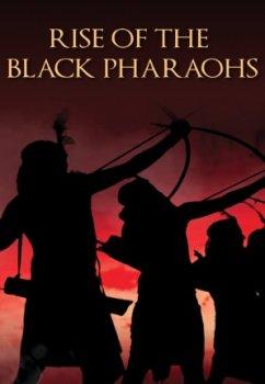 Разоблачение черноволосой смерти / Return of the Black Death  (2014)