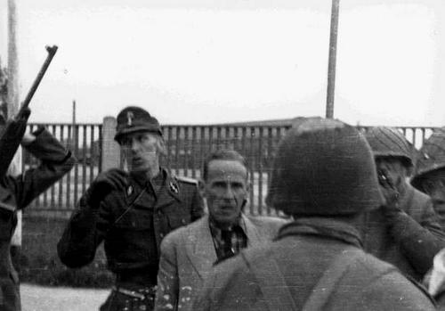 Резня в Дахау: за что бойцы США расстреляли 560 пленных немцев