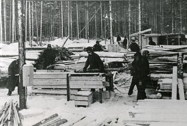 Зачем в СССР бывальщины созданы трудовые армии