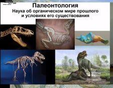 Станислав Дробышевский: «Палеонтология антрополога»