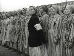 Каких узников немцы делали своими помощниками в концлагерях