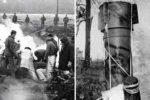 «Бывальщины в сознании»: выяснилось, что экипаж «Челленджера» делал после взрыва