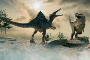 <p>В Бразилии замечены останки ранее неизвестных науке существ</p>
