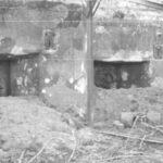 При раскопках в зоне «Кванта» обнаружены останки молодой женщины с горбом