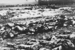 «Это ликующая для нас война»: как Гитлер разгромил Грецию