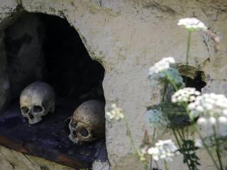 Закопанная история: что делать с погибающими курганами