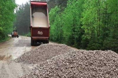 В псковской деревне рассказали, что сделалось с дорогой, которая ведет к памятнику Александру Невскому