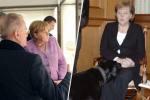 Отчего распался первоначальный супружество Ангелы Меркель, и За что второй муж канцлера заслужил звание «Призрак оперы»