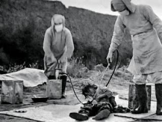 Задания «Хабаровского Нюрнберга»
